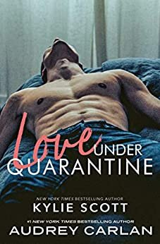 Love Under Quarantine is one of the best romance novels of 2020.