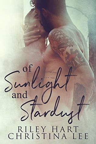 Of Sunlight and Stardust is one of the best MM gay romance novels worth reading