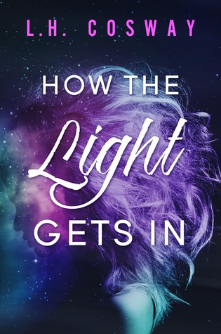 How the Light Gets In is one of the best second chance romance books worth reading