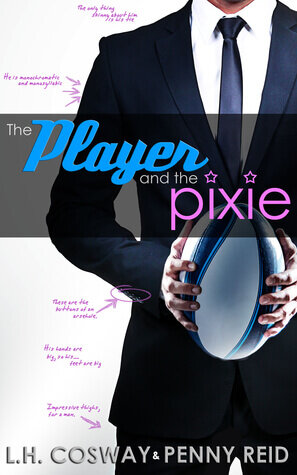 The Player and the Pixie is one of the best sports romance books.