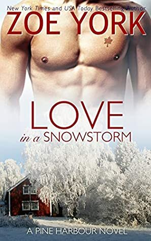 Love in a Snowstorm is one of many free romance books online.