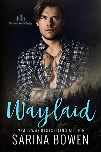 Waylaid is a new romance book release for July 2021.