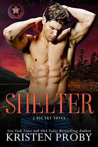 Shelter is a new romance book coming December 2021.