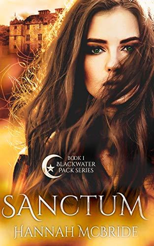 Sanctum is one of the best werewolf romance books worth reading.
